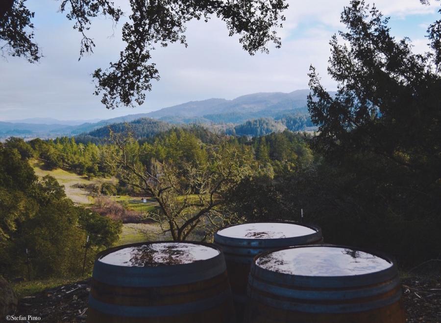 Valley View Barrels